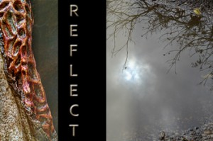 Show card for REFLECT: Carolyn Kerr & Sloan Saunders BFA Exhibition