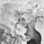 """Charlotte Wegrzynowski, """"Transfiguration, """" charcoal."""