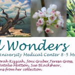 """Natural Wonders"" Wellness Walls for Art exhibition, University Medical Center"