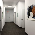 Anna Katherine Phipps' paintings installed in a Tupelo, MS, spa.