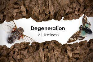 Ali Jackson, Degeneration BFA Exhibition, 2015