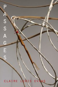 Passages: Claire Lewis Evans MFA Exhibition April 2-23, 2015, at the Grocery.