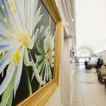 """""""Queen of the Night Blossoms"""" by Bethany Windham Engle is one of the paintings in """"Natural Wonders,"""" on display at the University Medical Center through Oct. 6. By Terri Robertson"""