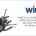 Wings, art exhibition by Kevin Ledgewood at the Dinah Washington Cultural Arts Center