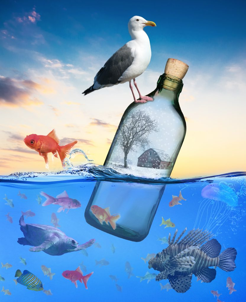 digitally created image of a seagull sitting atop a bottle floating in the ocean surrounded by fish