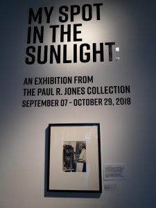 My Spot in the Sunlight – An Exhibition from the Paul R. Jones Collection