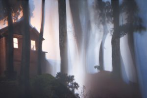 A mysteriously misty outdoor scene with a house and a dog hanging his head.