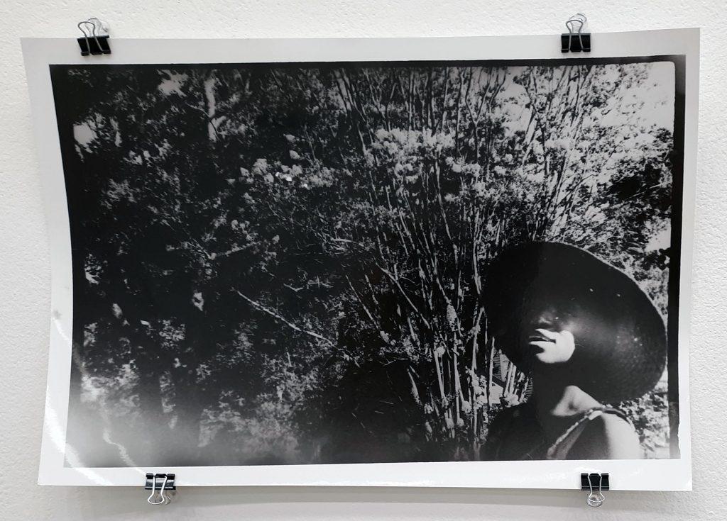 "Jasmine James, ""Sun Kissed Fuzzy Vision,"" gelatin print, 2019."