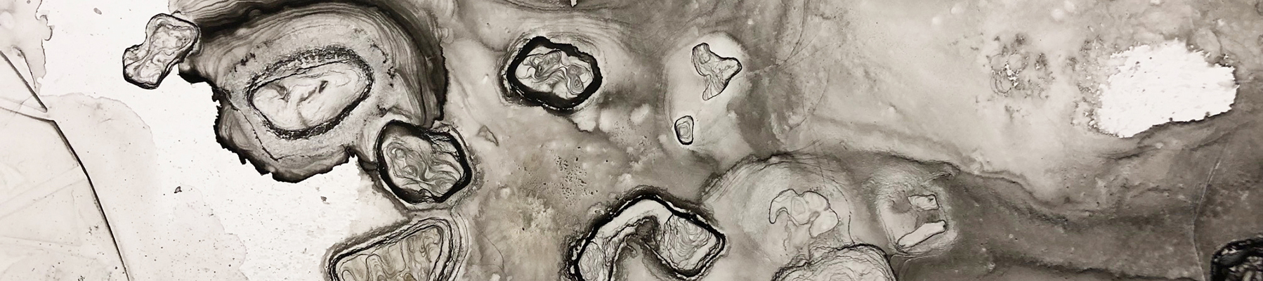 An abstract ink painting in black and gray.
