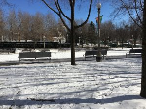 Snowy park in a town.